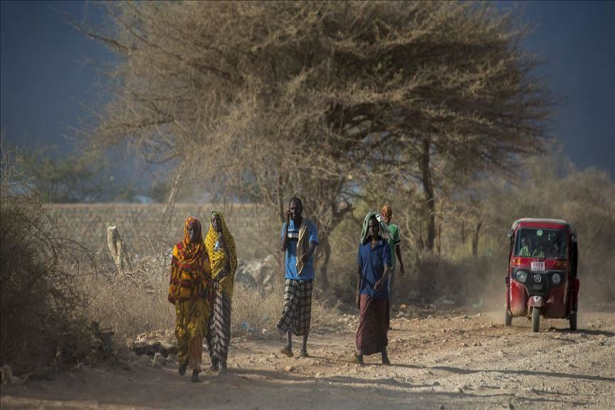 More than 2.73 mln people in Somalia face food crisis: UN
