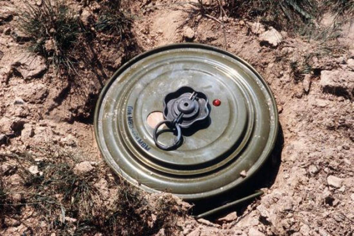 ICBL: Dağlıq Qarabağ münaqişəsinin ölümcül mirası insanların həyatını almaqda davam edir