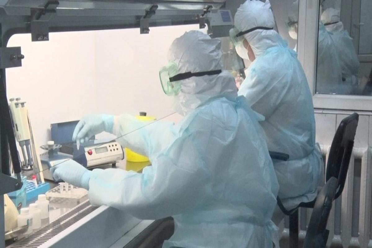 Kyrgyzstan reports 619 new coronavirus cases, 5 deaths