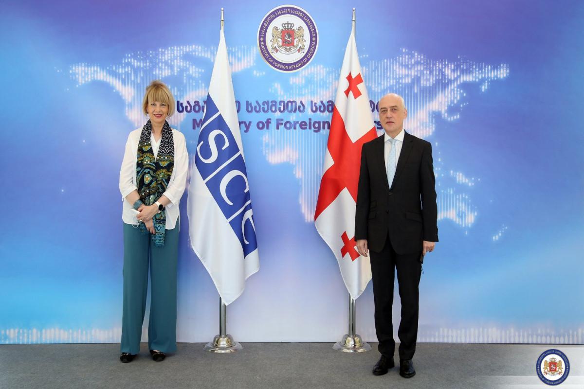 Gürcüstanın xarici işlər naziri ATƏT-in Baş katibi ilə görüşüb