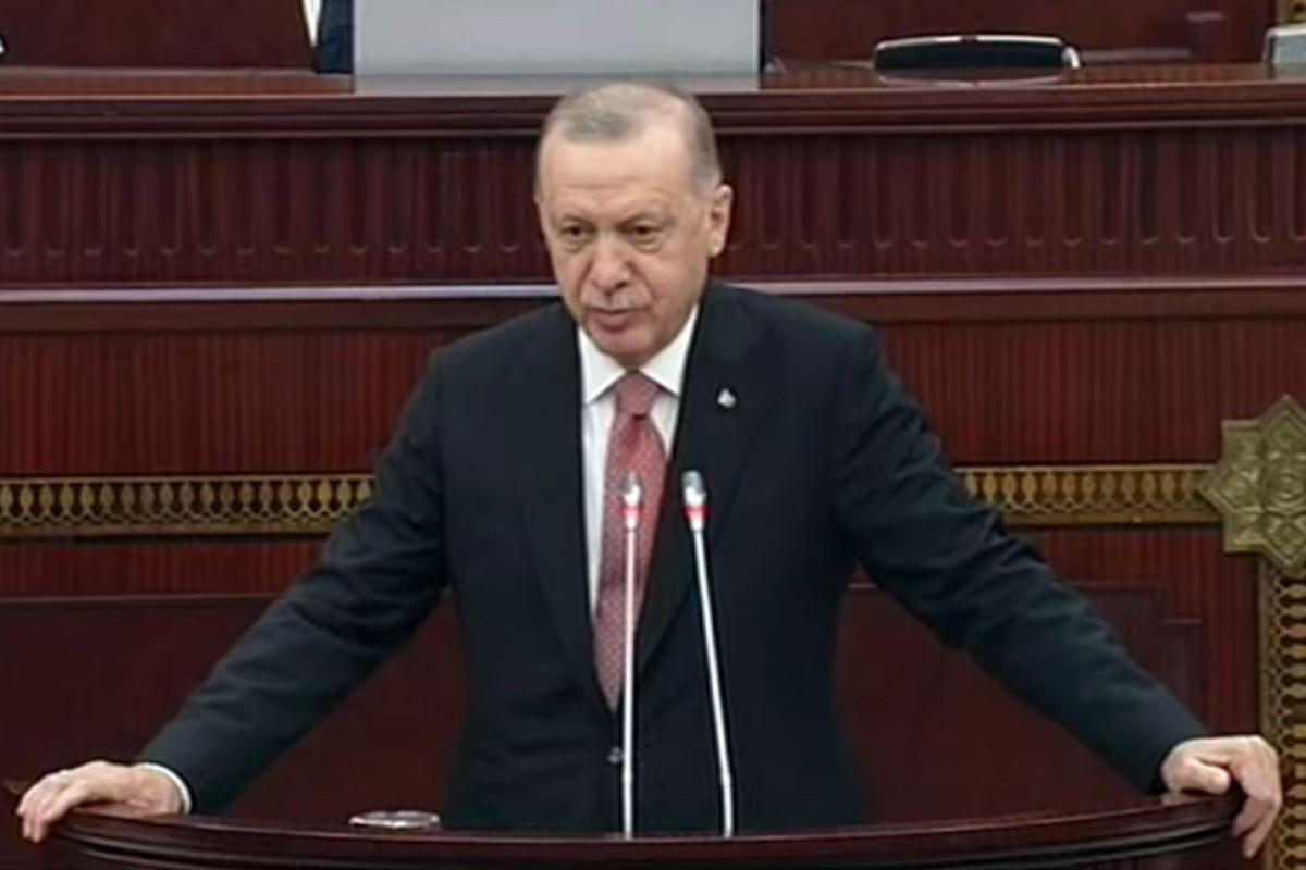 Эрдоган: По мере того, как Армения будет решать свои проблемы с Азербайджаном, мы, Турция, тоже предпримем необходимые шаги