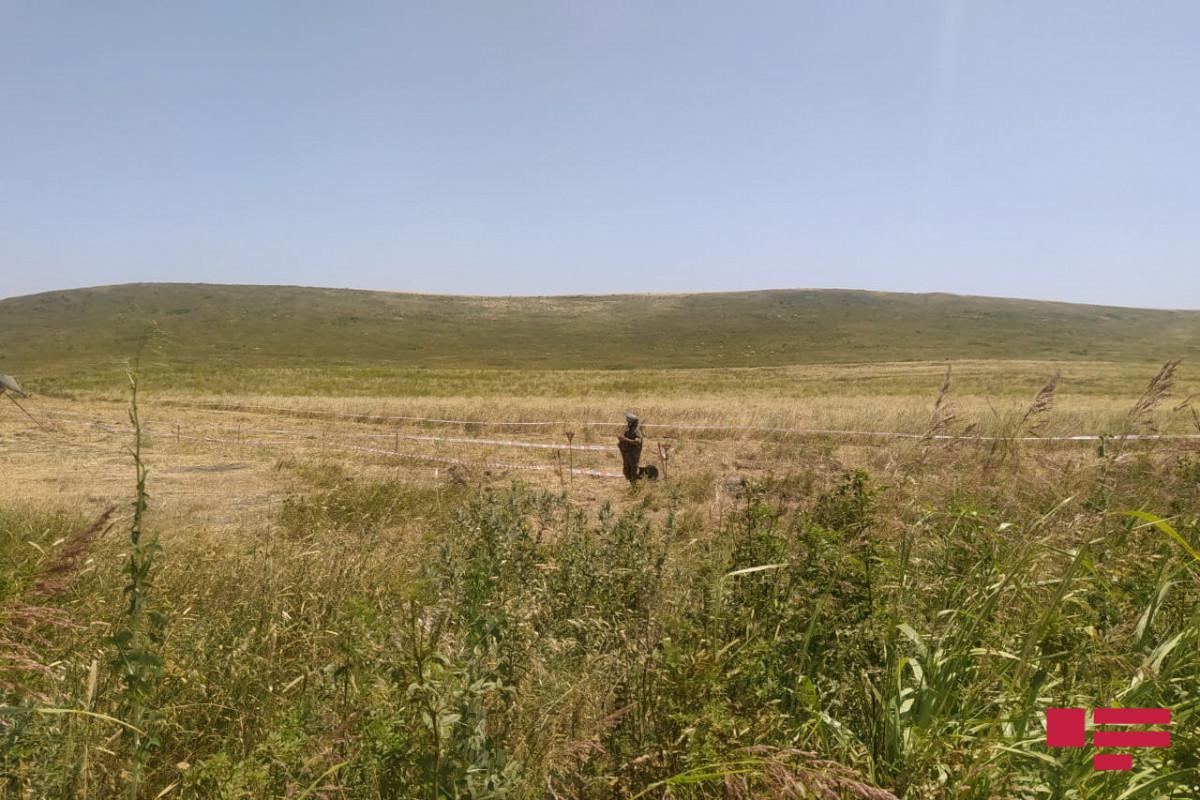 Media representatives view the demining process in Fuzuli