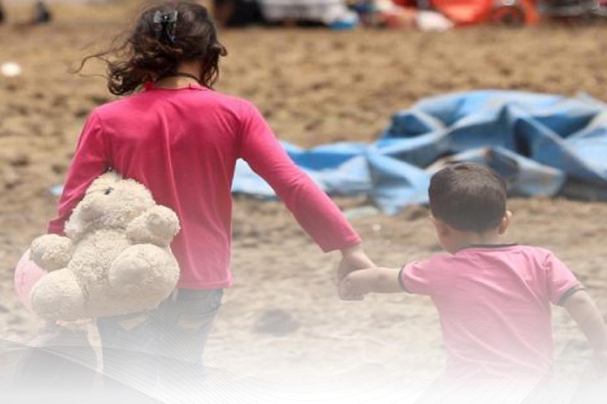 Nazirlik: Suriyadan gətirilən 6 qadın və 14 uşağın reabilitasiyası həyata keçirilir