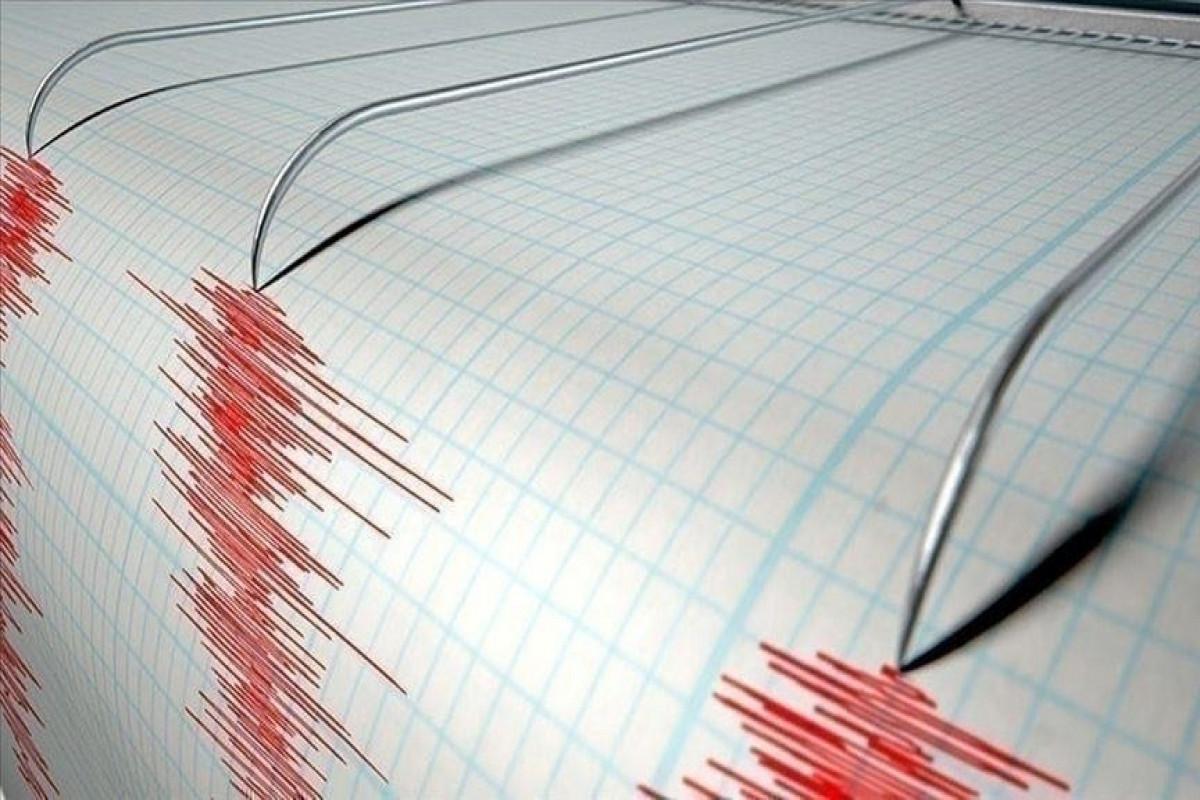 Magnitude 3.9 earthquake jolts Istanbul