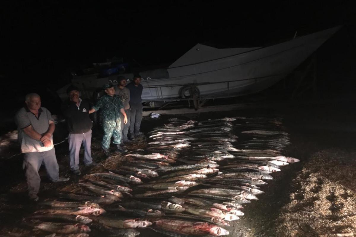 """ГПС: Задержаны лица, занимавшиеся незаконным выловом осетровых в Каспийском море-<span class=""""red_color"""">ФОТО</span>"""