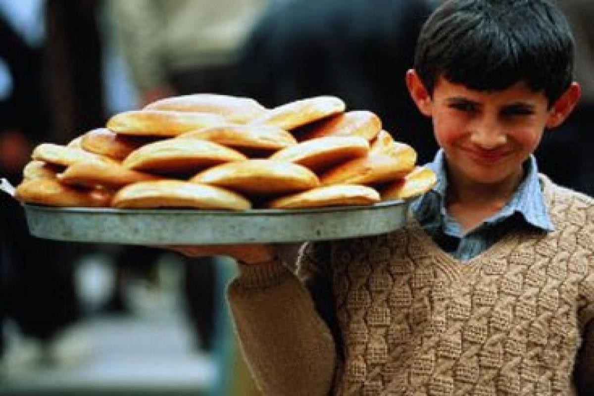 МТСЗН: В Азербайджане заключены трудовые договоры с 143 лицами, не достигшими 16 лет
