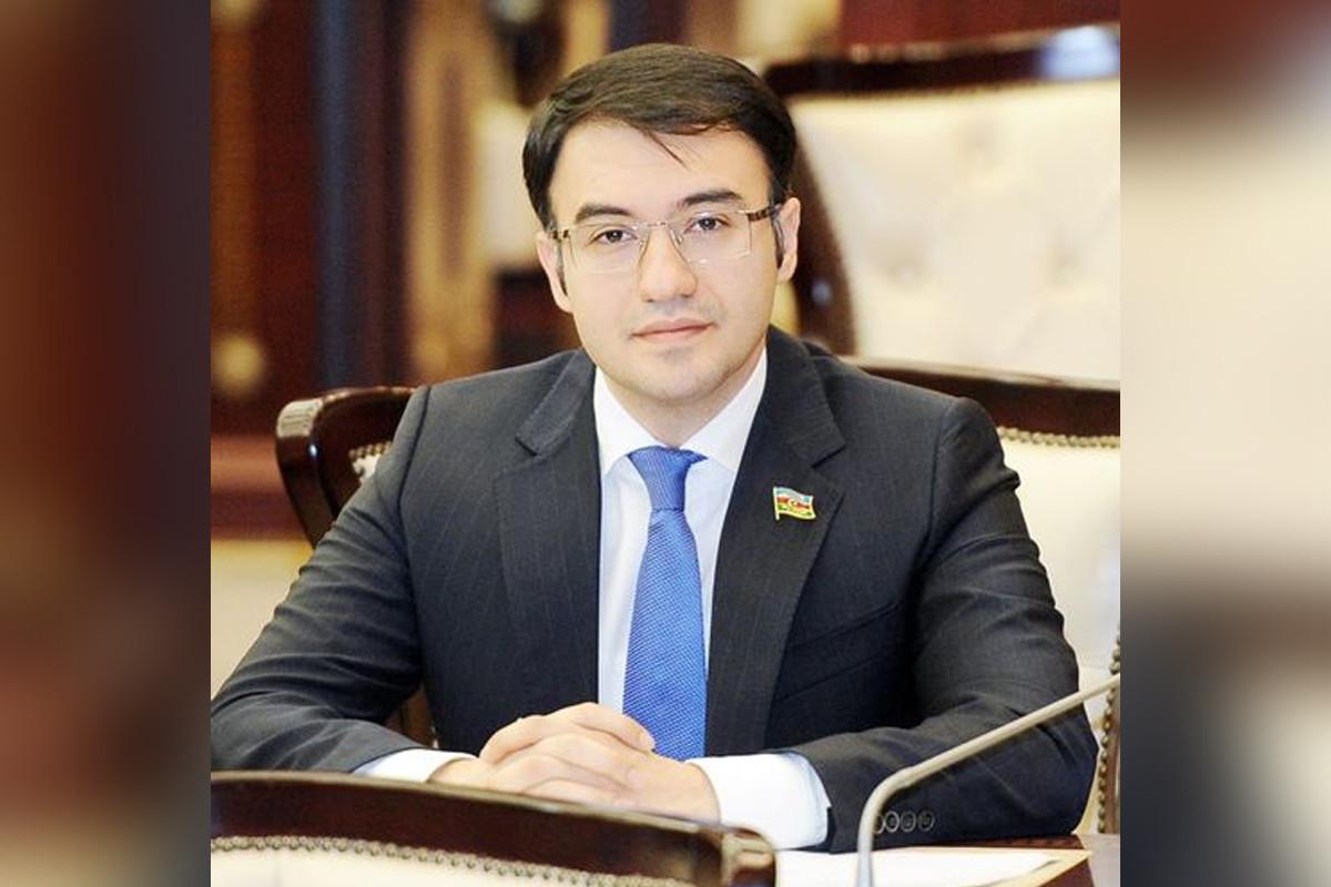 Azərbaycan deputatı AŞ Konvensiyasına əlavə protokola hüquqi rəy hazırlanması üzrə məruzəçi seçilib