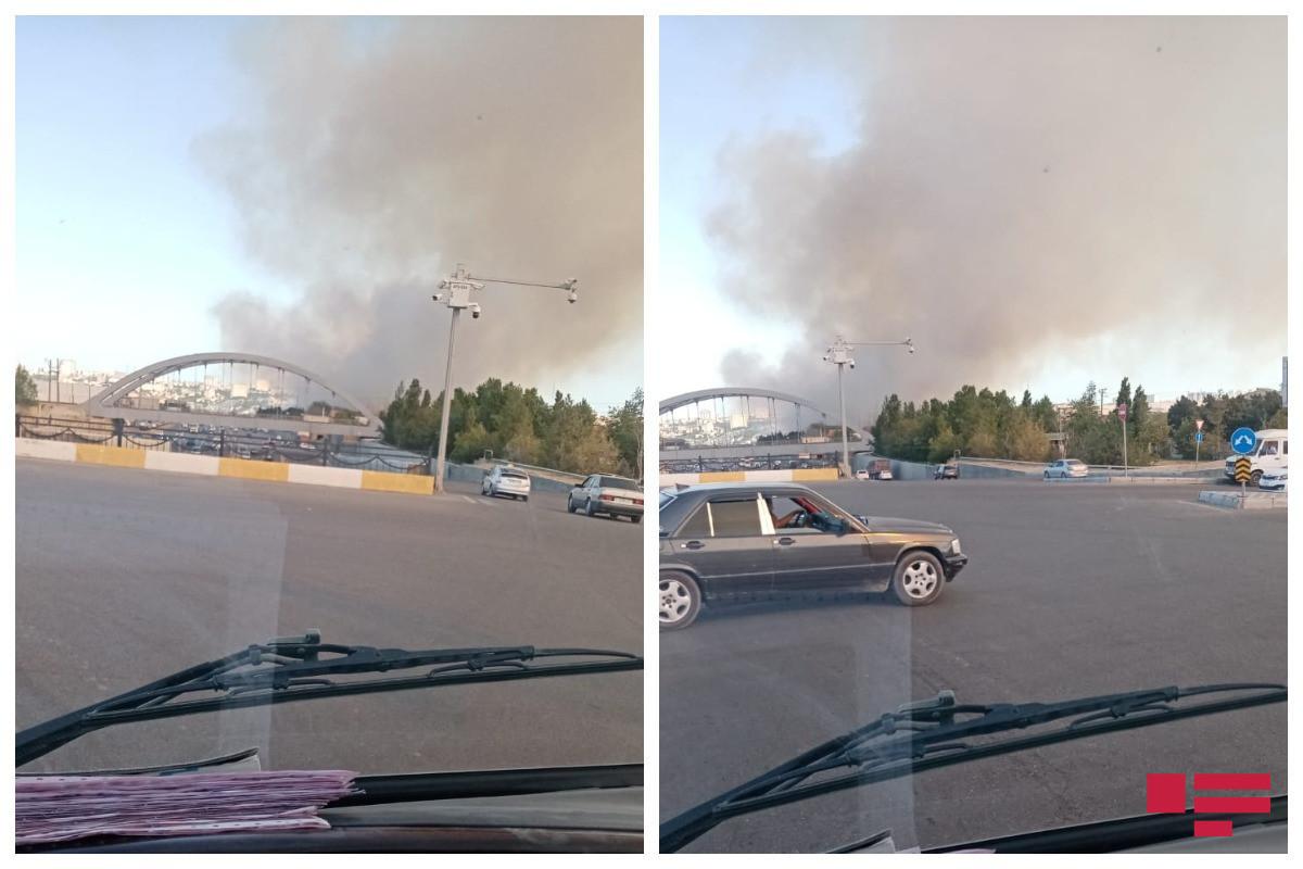 """Локализован пожар, произошедший на территории Бинагадинского района-<span class=""""red_color"""">ВИДЕО</span>"""