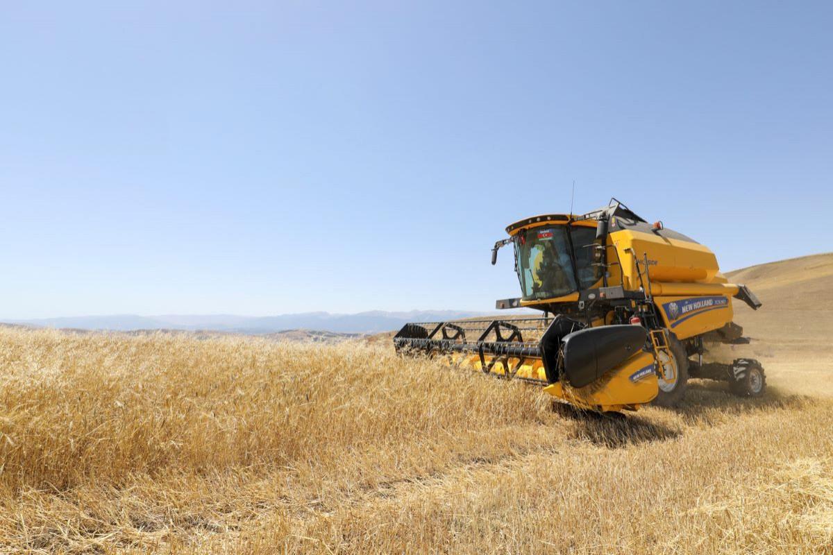 Азербайджанские фермеры получили от государства более 20 млн манатов субсидий на посевные работы