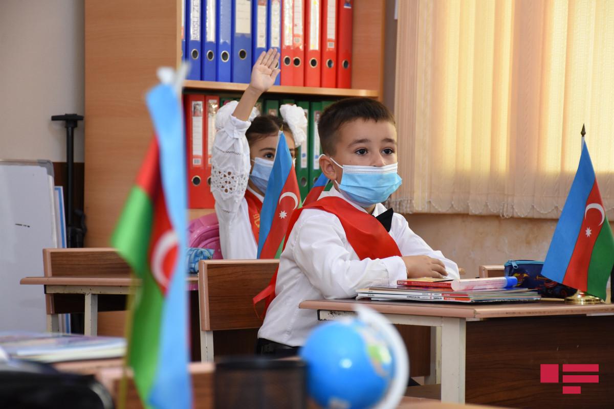 Начинается выбор школ для первоклассников с обучением на иностранных языках