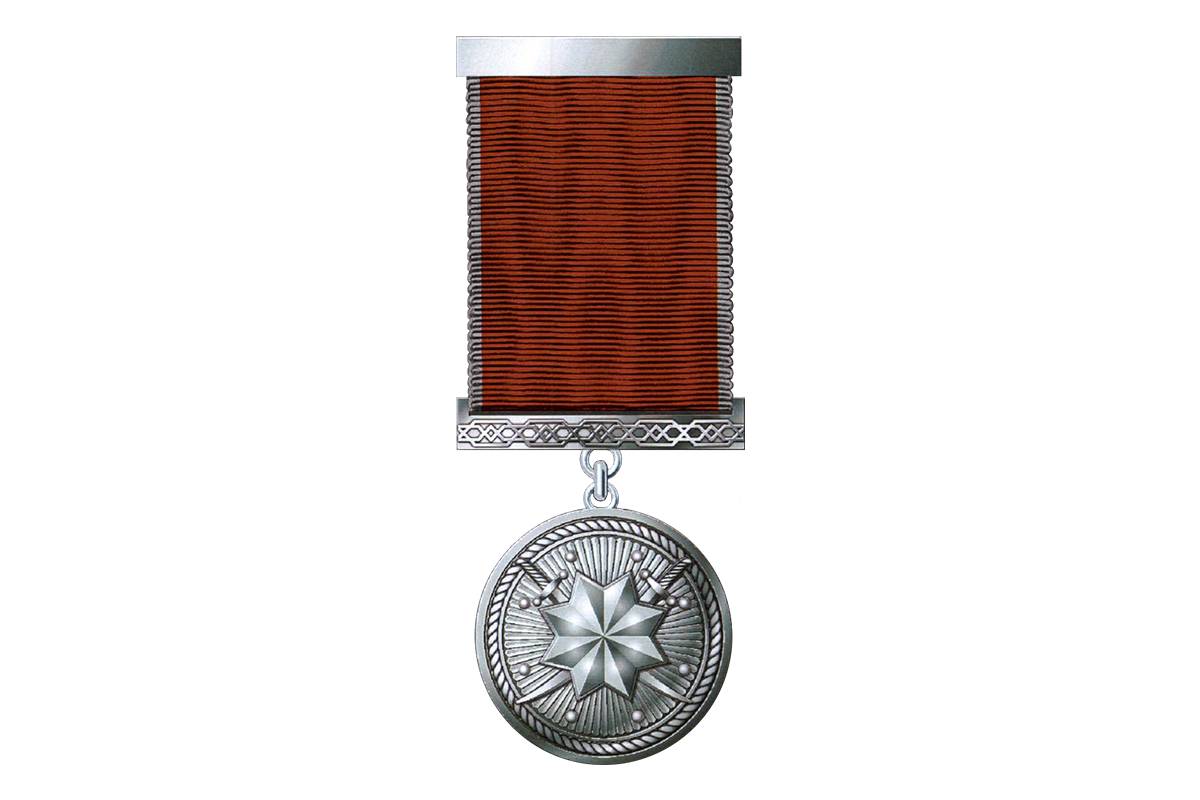 """President awards a group of servicemen medal """"For military services"""""""