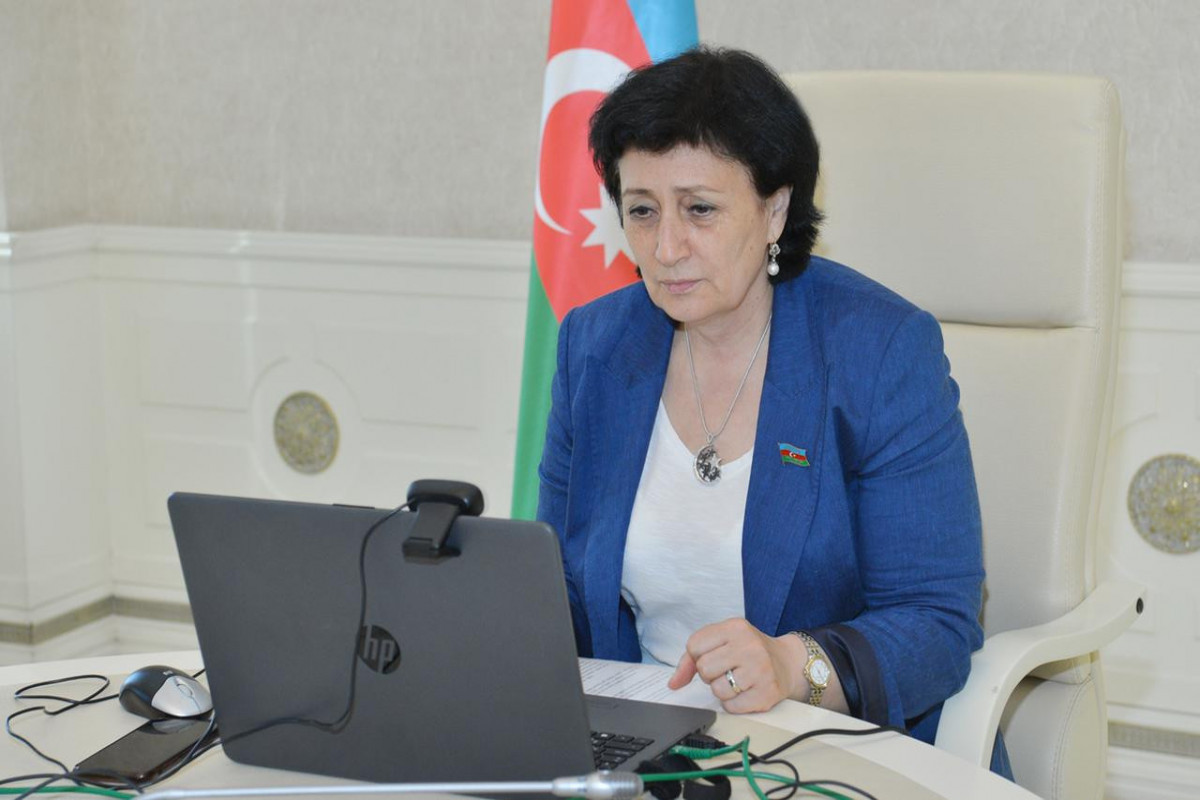 Azerbaijani MPs speak about Patriotic War in NATO PA Rose-Rout seminar