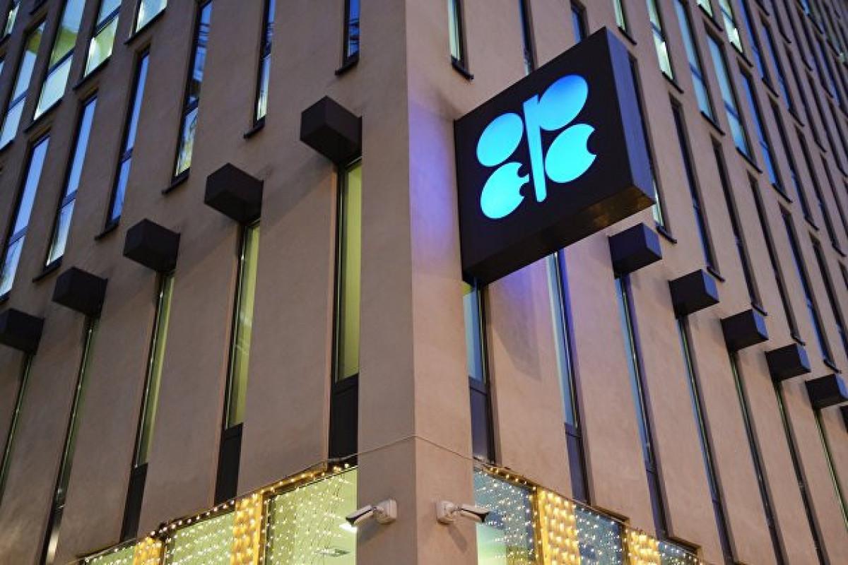 OPEC bu ilin ikinci yarısında gündəlik neft tələbatının 5 mln. barel artacağını gözləyir