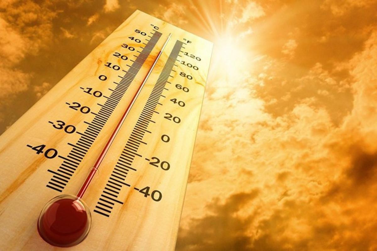 Аномальная жара в Канаде привела к гибели около 30 человек