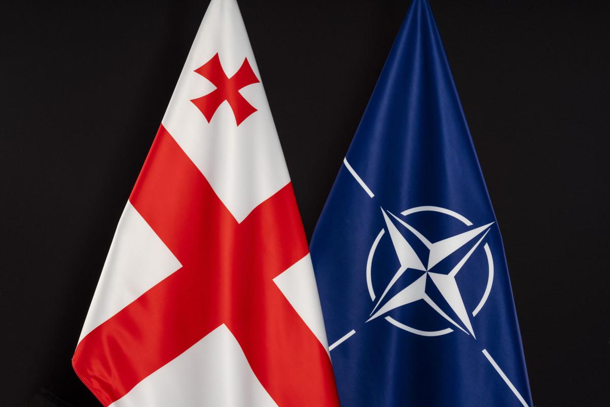 Stoltenberq Gürcüstanın müdafiə naziri ilə görüşəcək