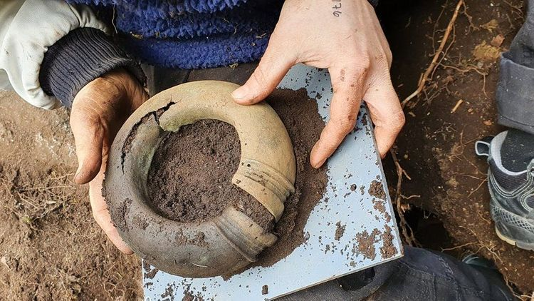 Bronze Age treasure found in Swedish forest by mapmaker - <span class=