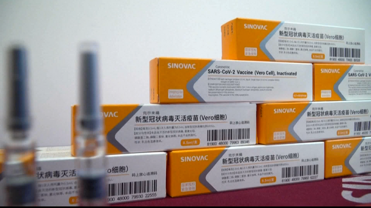 EU regulator begins real-time review of first Chinese COVID-19 vaccine