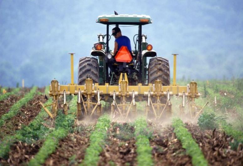 Azərbaycan fermerlərinə 121 mln. manatdan çox əkin subsidiyası ödənilib