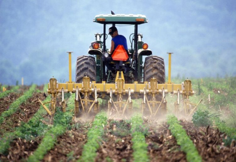 Азербайджанские фермеры получили посевных субсидий на 121 млн манатов