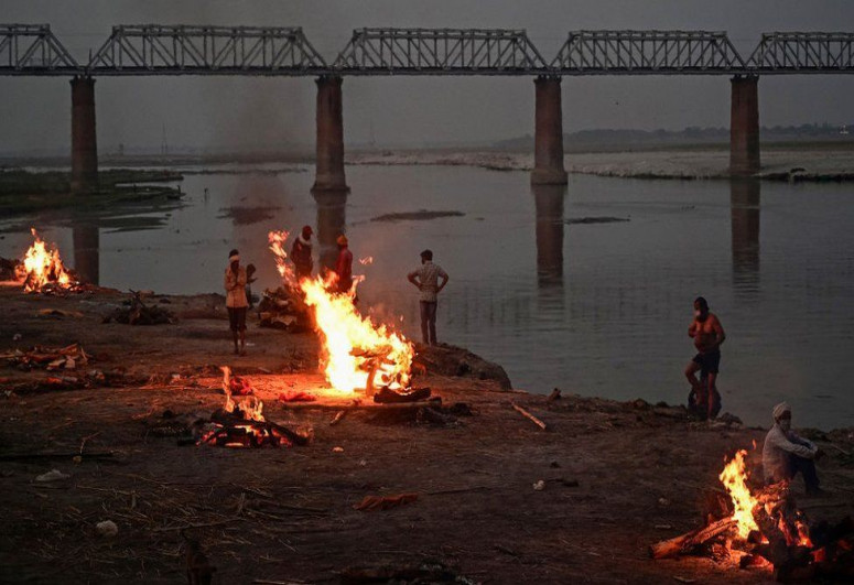 Dozens more bodies wash up on Ganges river bank in India