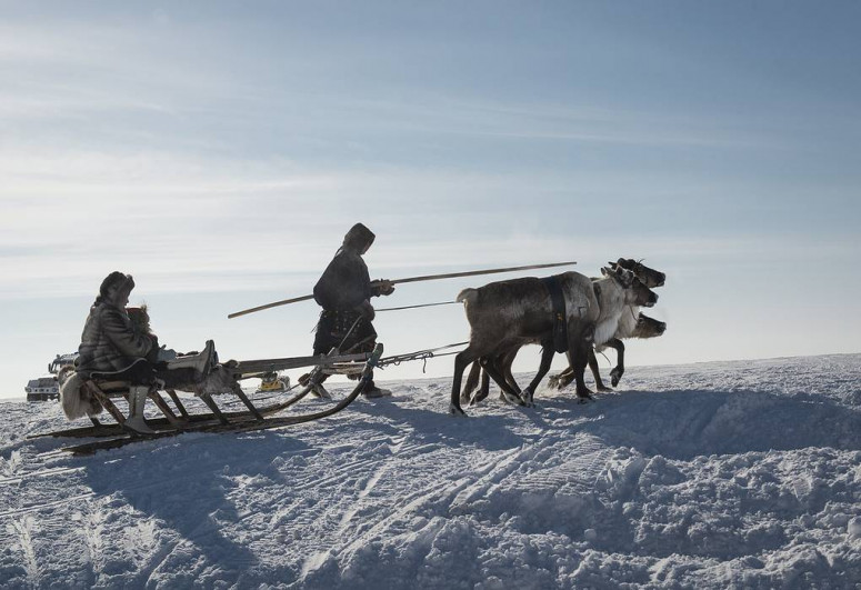 Climate, social issues are Arctic Council's key topics to 2023