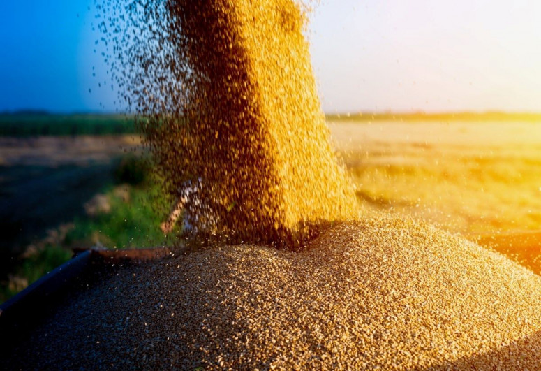 Азербайджан увеличил импорт пшеницы на 30%