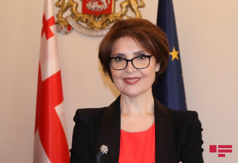 Председатель комитета парламента Грузии: Никто не может разрушить наши прекрасные отношения с Азербайджаном