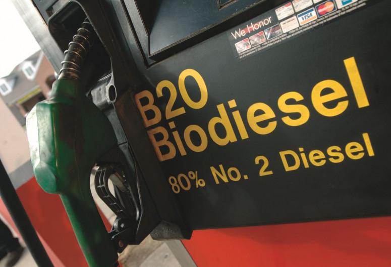 Bioyanacağa artan tələbat ərzağın qlobal bahalaşmasına səbəb olub