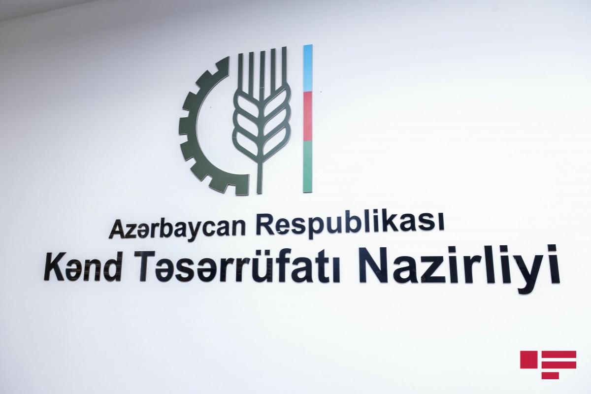 Azərbaycan beynəlxalq rəqəmsal kənd təsərrüfatı konfransı təşkil edəcək