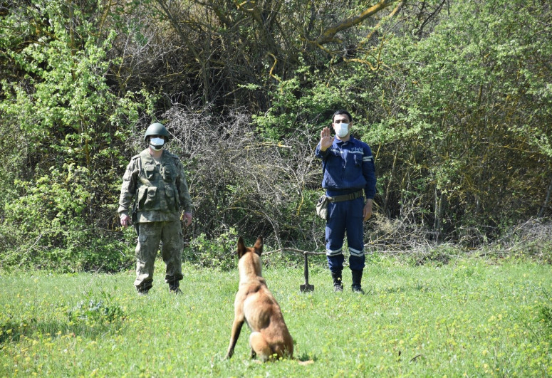 Turkish Defense Ministry presents mine detection dogs to the Azerbaijan