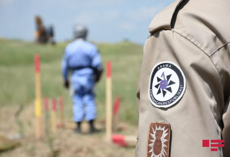 Azerbaijan spent AZN 2.9 mln on demining works last year