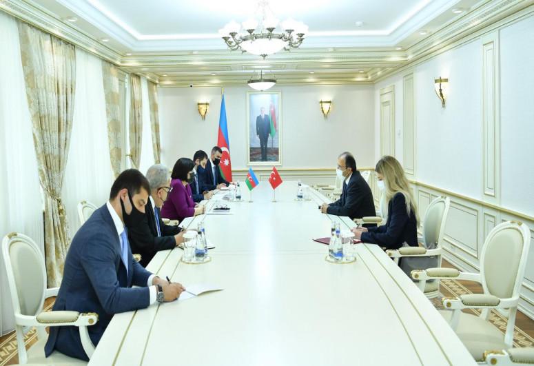 Chair of Azerbaijani Milli Majlis Sahiba Gafarova met with newly-appointed Turkish Ambassador in Azerbaijan