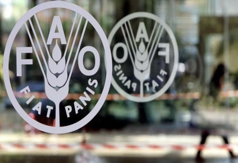 Azerbaijan to attend UN Food Systems Summit