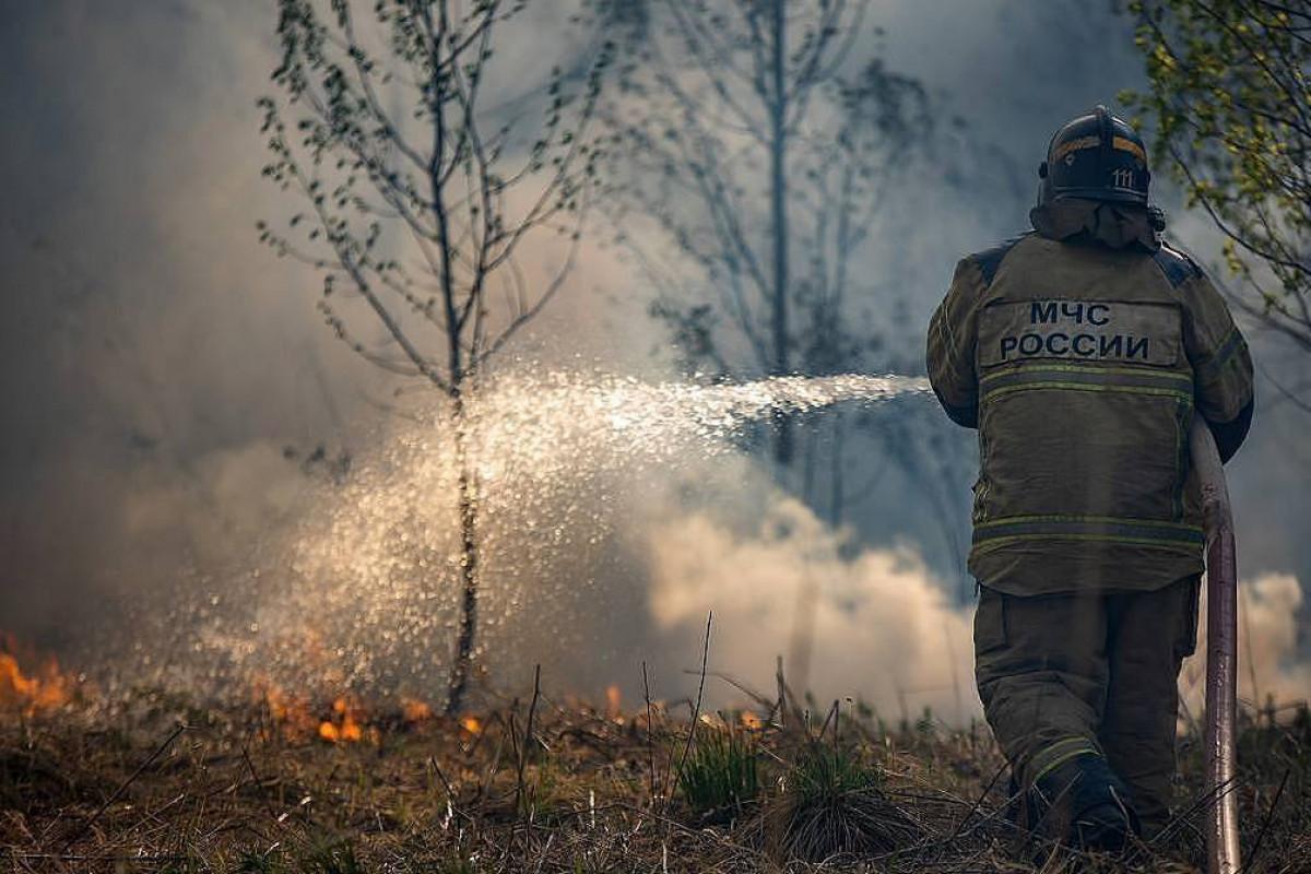 Bu gün Rusiyada yenidən 32 meşə yanğınları aktivləşib
