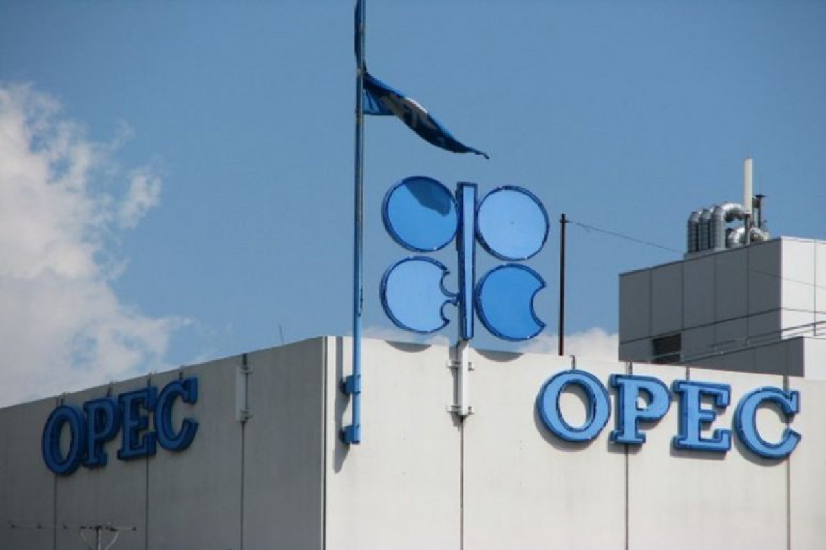 OPEC bu il neft bazarında daha dərin defisit gözləyir