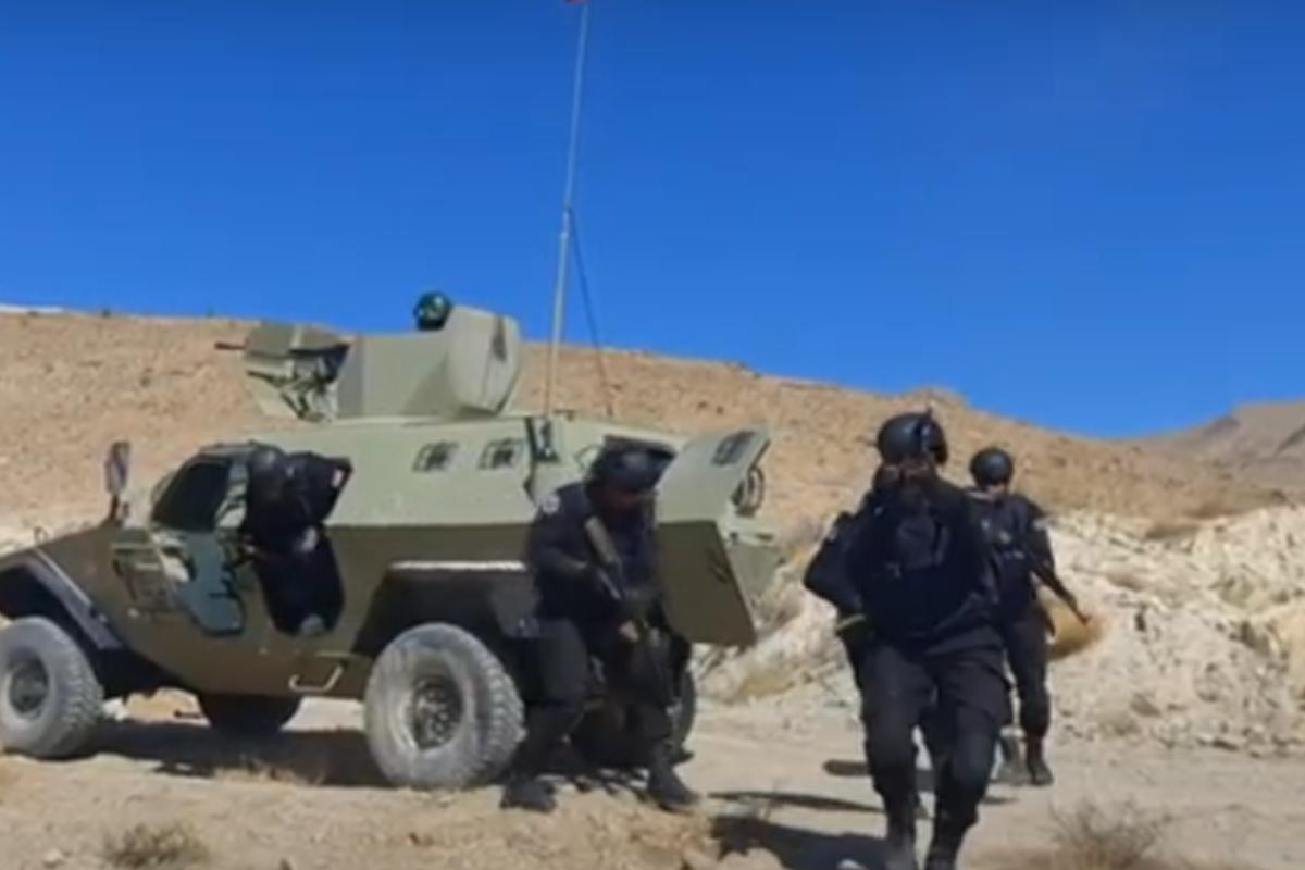 Naxçıvanda Azərbaycan-Türkiyə birgə döyüş atışlı taktiki təlimi davam edir - VİDEO