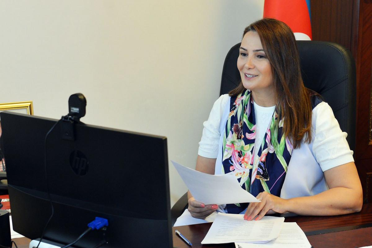 Qənirə Paşayeva, Milli Məclisin Mədəniyyət komitəsinin sədri