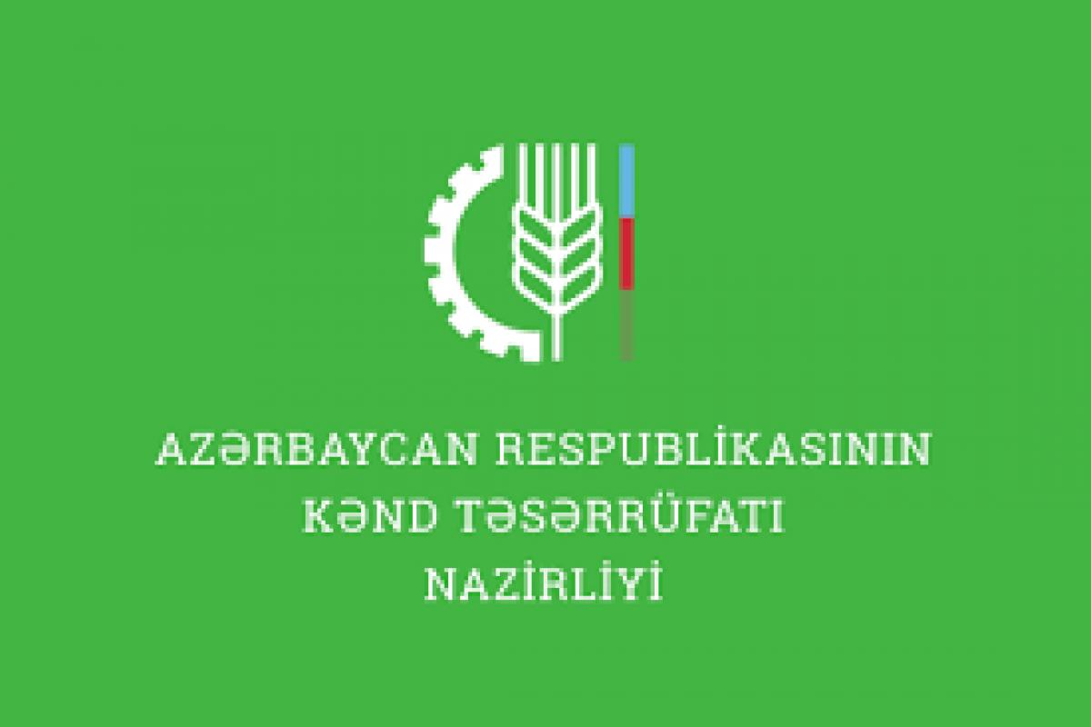 Kənd Təsərrüfatı Nazirliyi Aparatının işçilərinin say həddi azaldılıb