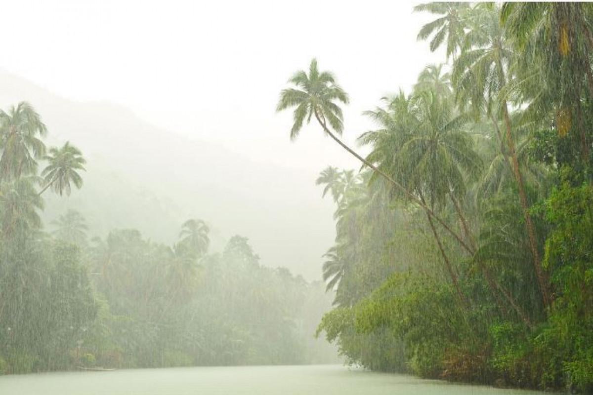 Filippində tropik qasırğa 9 nəfərin həyatına son qoyub, 11 nəfər itkin düşüb