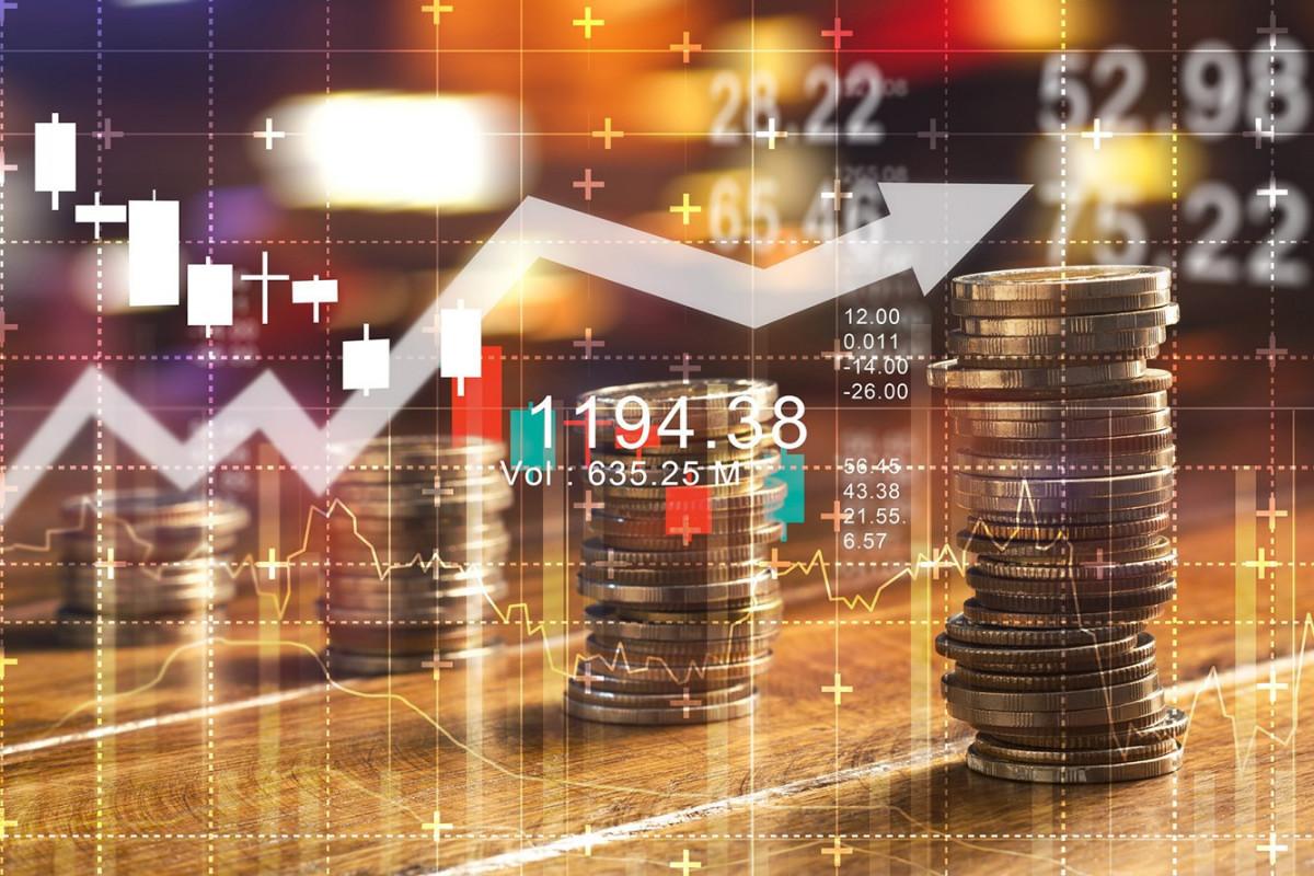 В этом году в экономику Азербайджана инвестировано 9 млрд. манатов