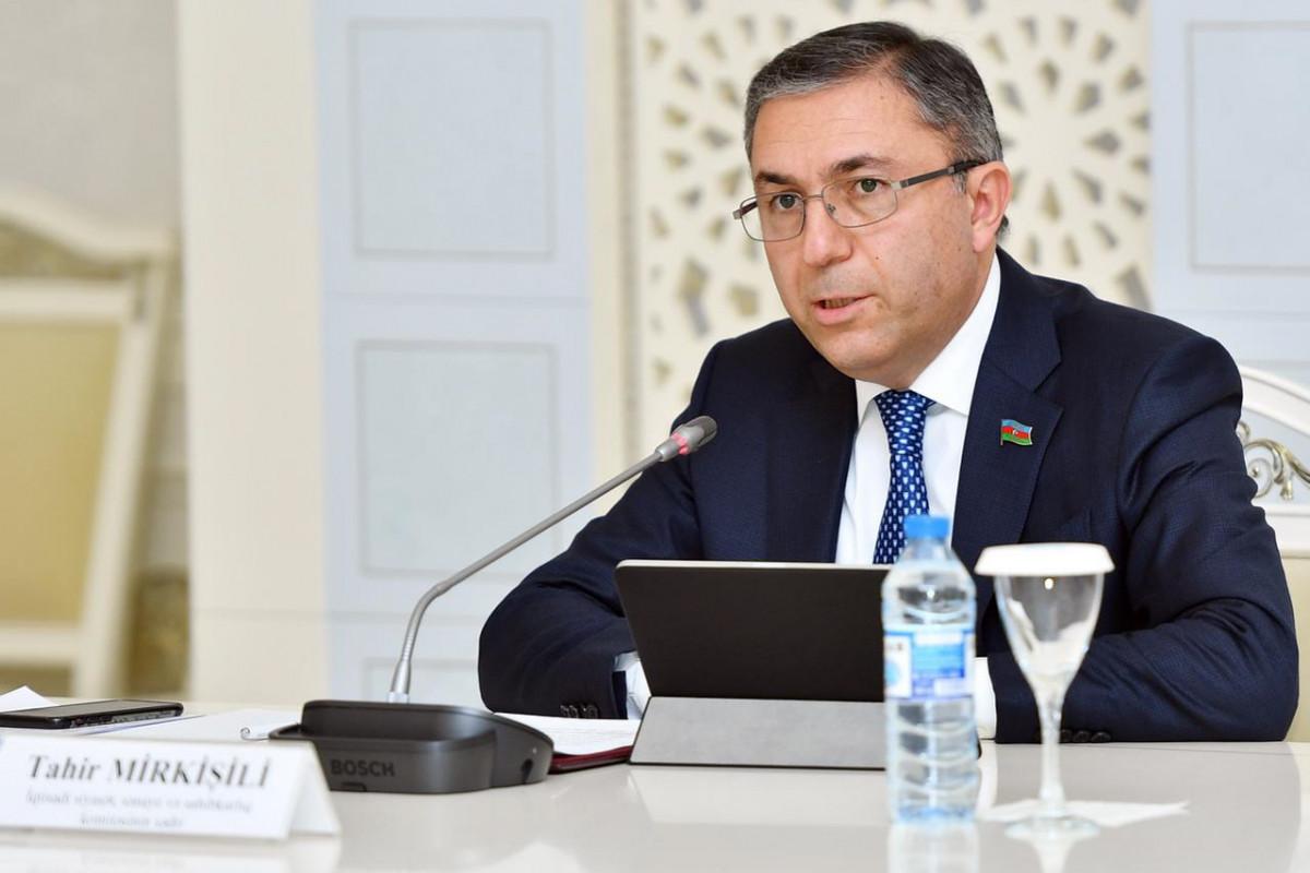 Tahir Mirkişili, Milli Məclisin İqtisadi siyasət, sənaye və sahibkarlıq komitəsinin sədri