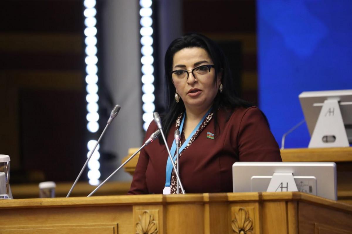 Депутат Милли Меджлиса Фатма Йылдырым