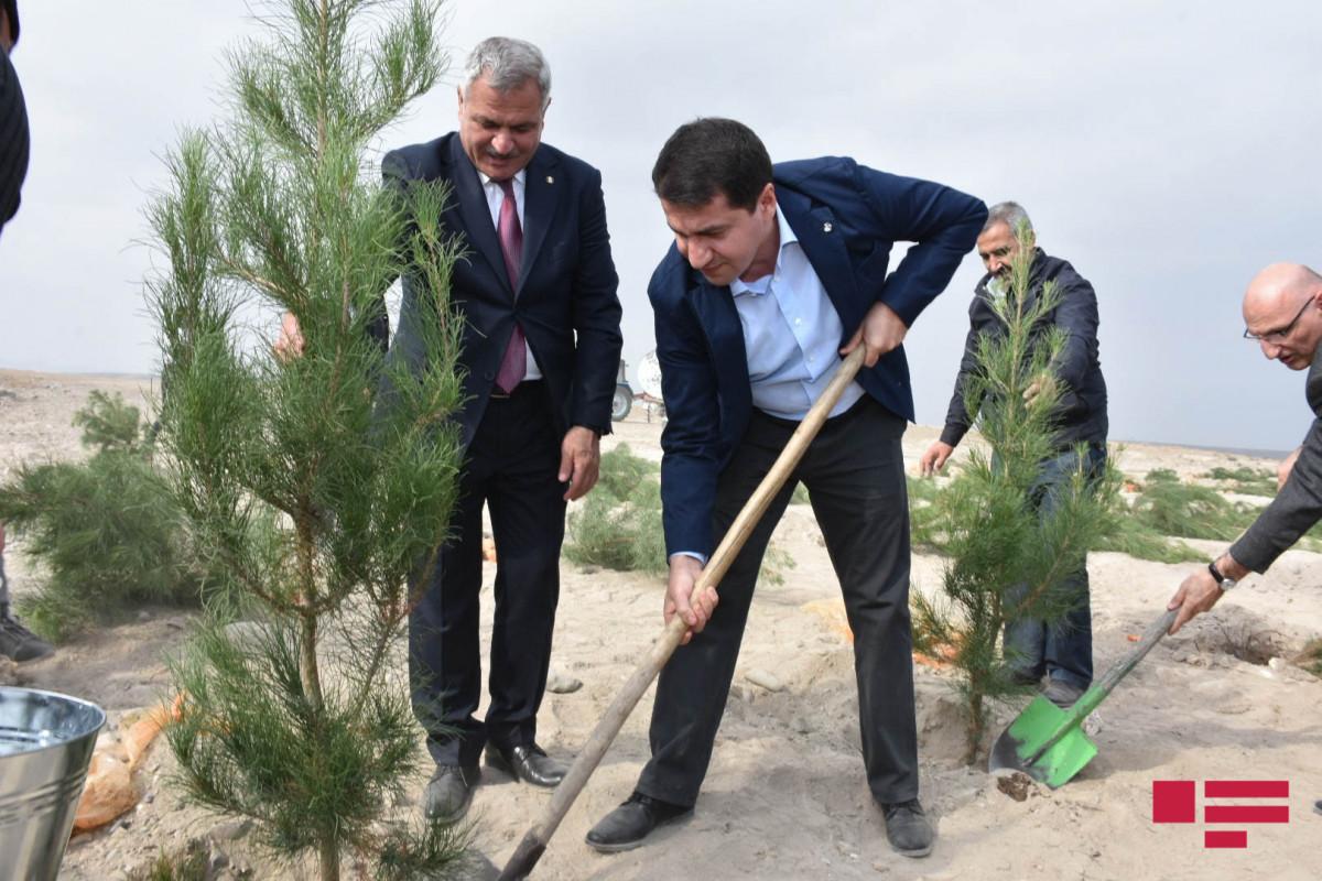 Diplomatlar Tərtərin Marağa kəndində ağac əkiblər