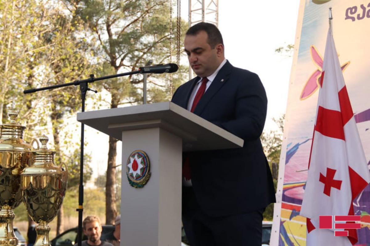 Laşa Darsalia, Gürcüstan xarici işlər nazirinin birinci müavini