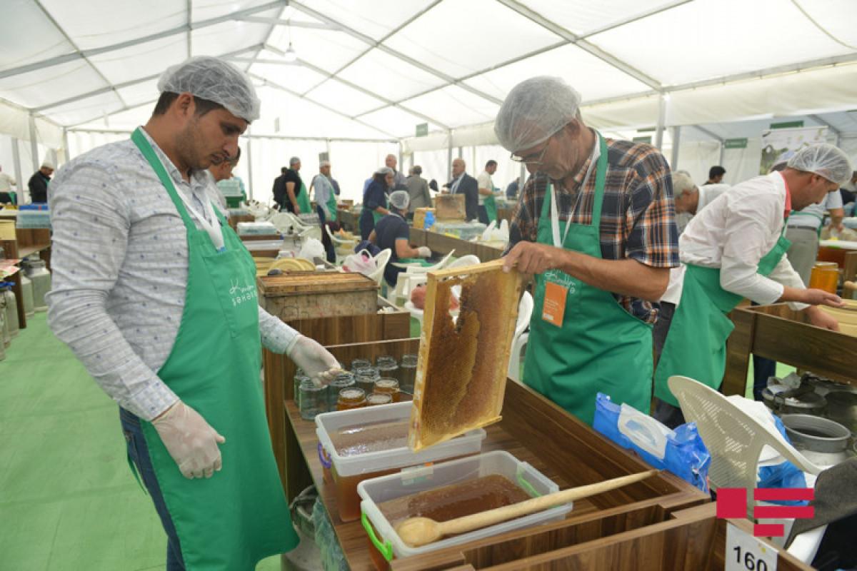 Завтра в Баку начинается ярмарка меда