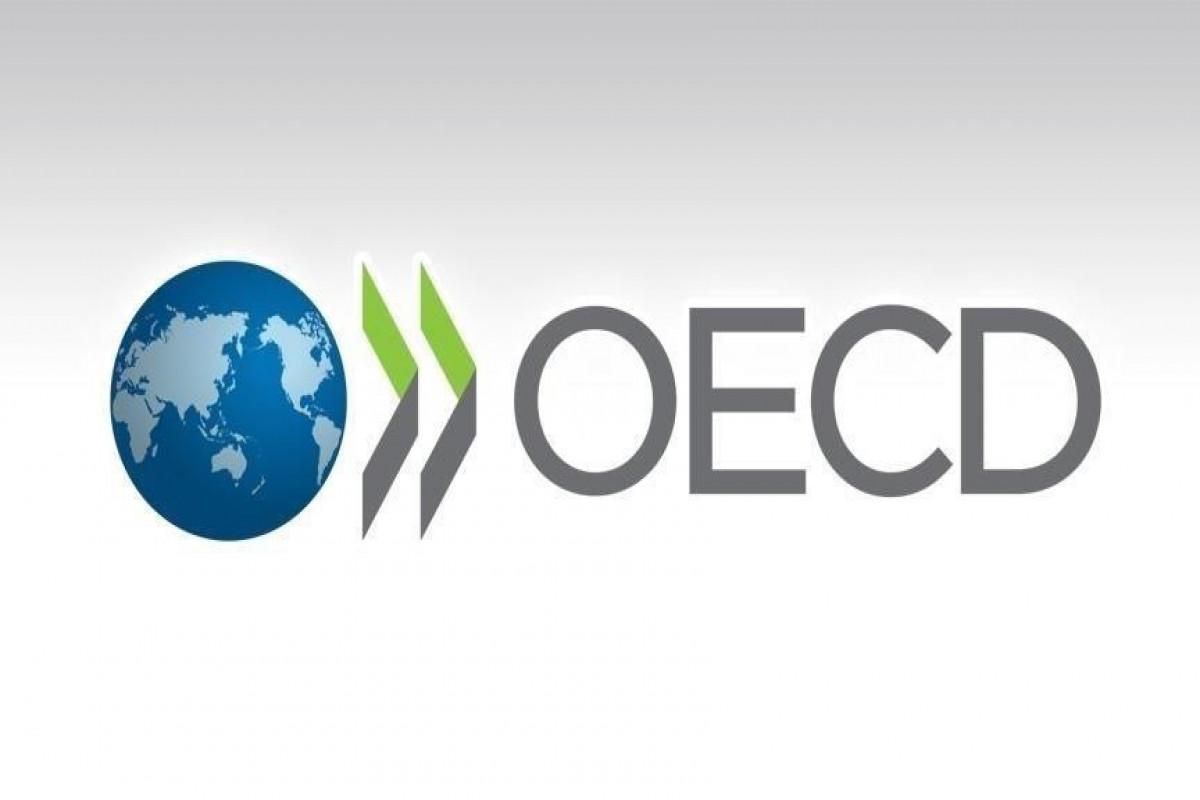 OECD warns world of slowing economy in 2060