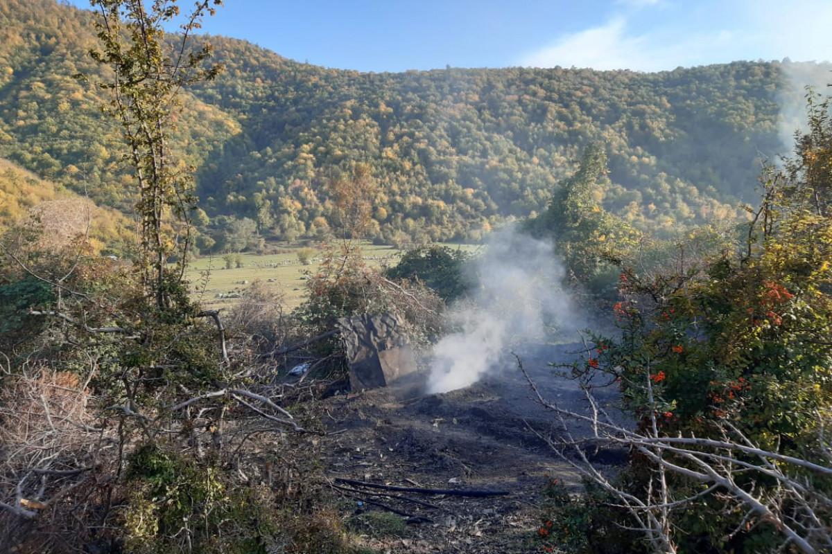Приостановлена незаконная деятельность по производству древесного угля