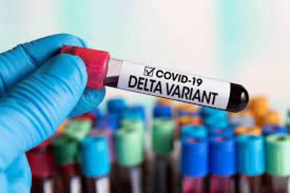 Инфекционист: Избежать появления мутации AY.4.2 в Азербайджане невозможно, нужно ускорить вакцинацию