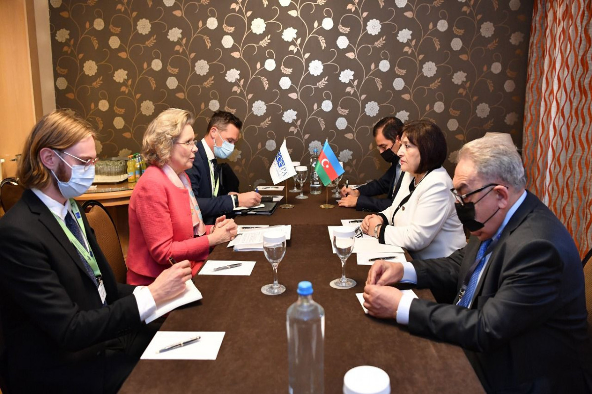 Встреча с председателем Милли Меджлиса Сахибой Гафаровой, председателем Парламентской ассамблеи ОБСЕ Маргарет Седерфельт
