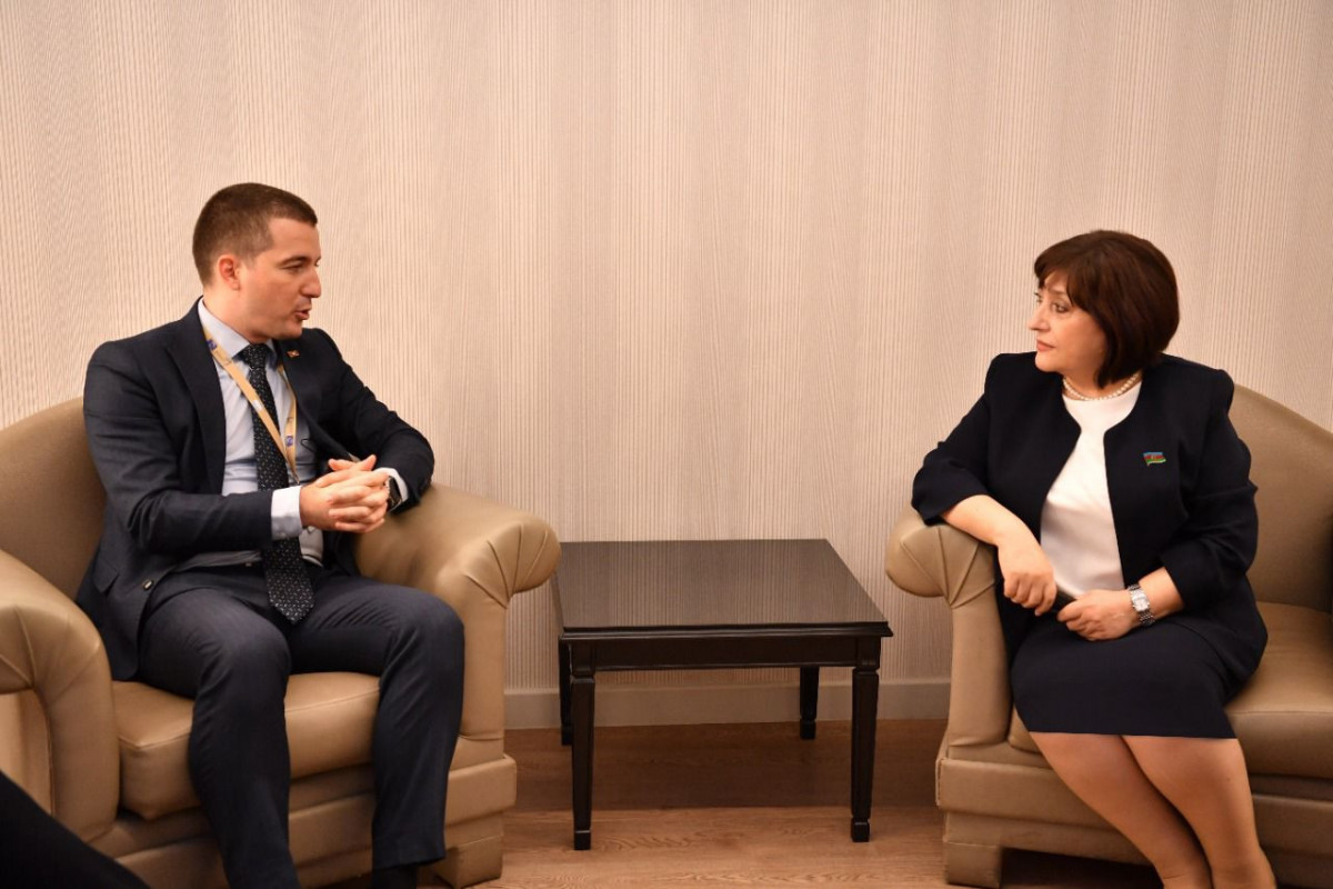 Chair of Milli Majlis meets Chairman of Montenegrin Parliament